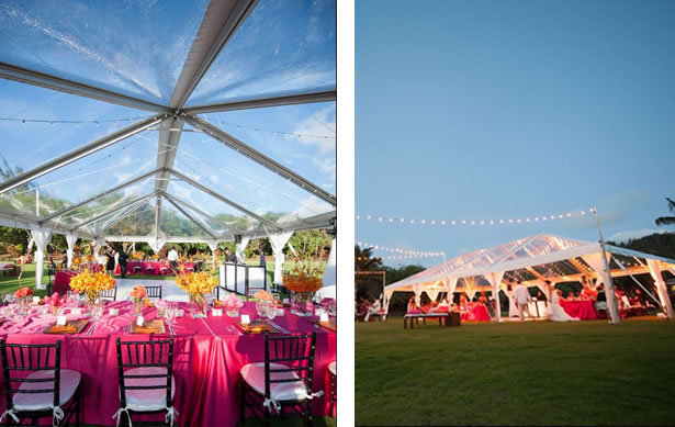 pink party tent
